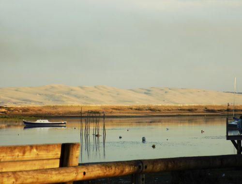 Visiter le Bassin d'Arcachon - Dune du Pilat - Nos aventures voyageuses