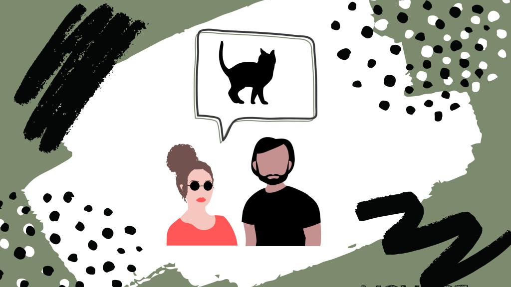 Pourquoi on a adopté un chaton ? Nos aventures voyageuses